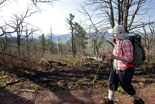 Lynn Cameron of Mount Crawford, Va., looks out at the view while hiking the Mines Run Trail, on Shenandoah Mountain, Va., which is in the George Washington National Forest   (AP Photo/Daily News-Record, Nikki Fox, File)