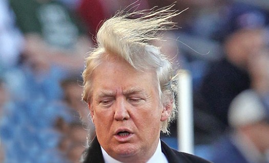 Donald Trump's hair: About as predictable as Campaign 2016