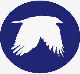 crow_picto