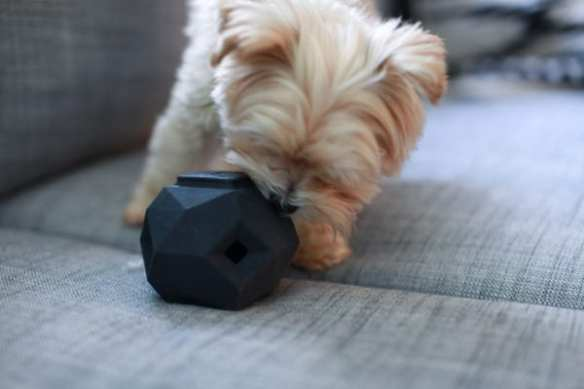 The Odin at work (Image: Up Dog Toys)