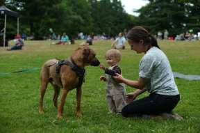 Volunteer Park picnic