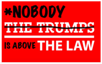 Nobody is Above the Law - Protect the Mueller Investigation @ Cal Anderson Park