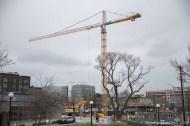 Crane2018-2