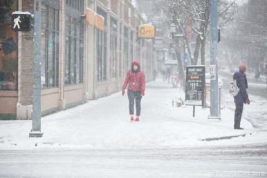 SnowDay2019-7