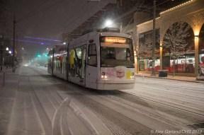 Snowpocalypse2-31