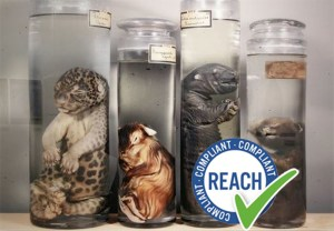 Formaldehyde Reclassification Carcinogen Cat1B EU REACH