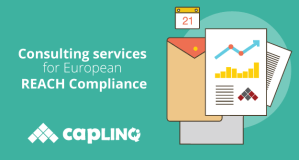 Consulting services for european reach compliance