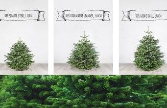 Weihnachtsbaum bei meine tanne bestellen