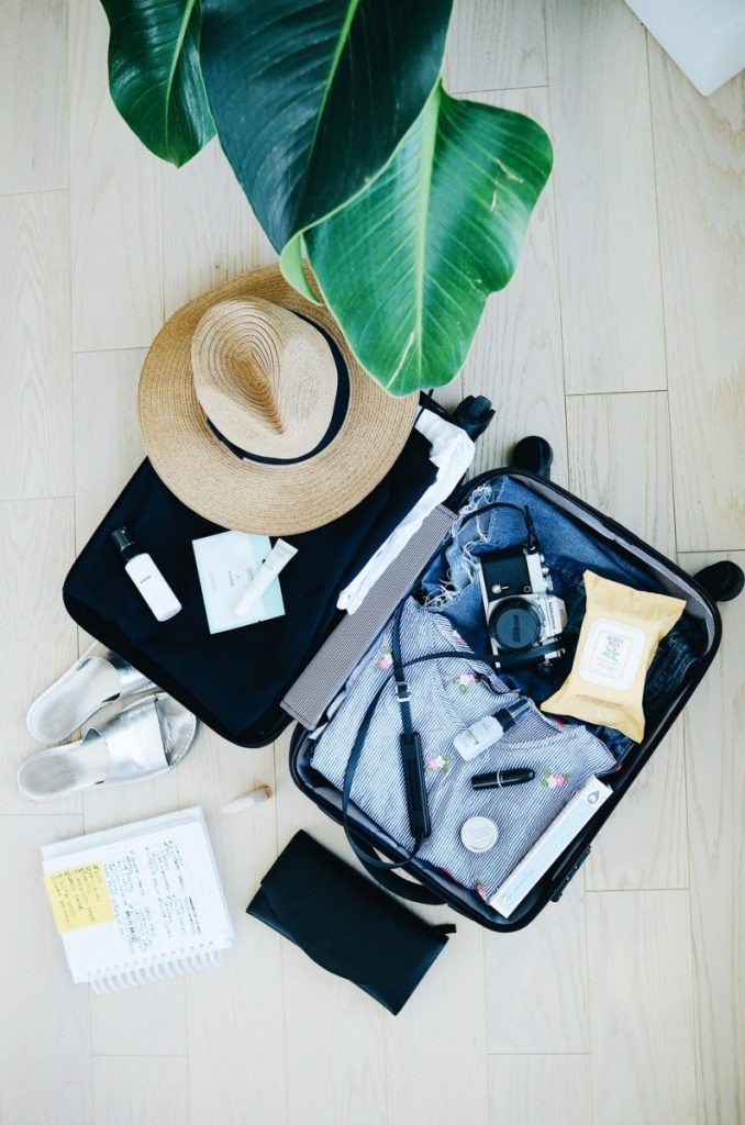 travel suitcase hat