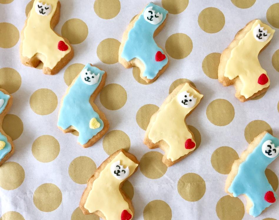 llama biscuits