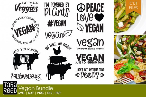 design bundle vegan
