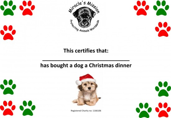 Christmas dinner for a dog or cat