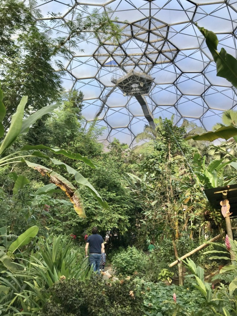 The Tropical Biome
