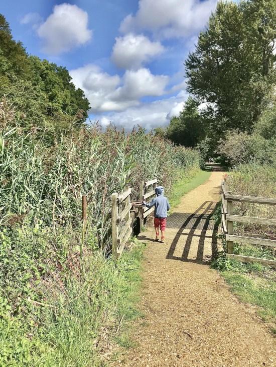 nature walk outside: 1000 Hours Outside Challenge
