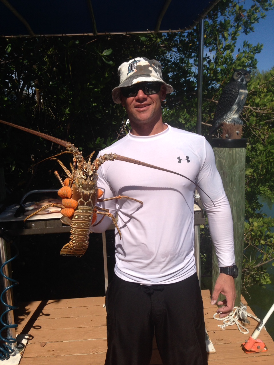 Spearfishing charter off Marathon produces lobster nice lobster. The Fl Keys offer many different opportunites on the water.