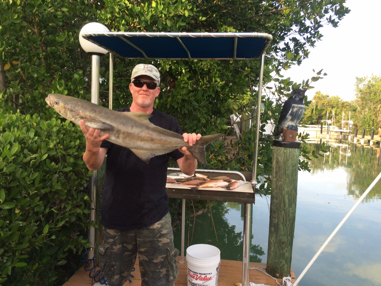 Bryan caught his cobia fishing a Gulf wreck off Marathon in the Fl Keys. Come book your next fishing charter with Capt. Doug.