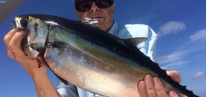 Tuna fishing Marathon Fl Keys