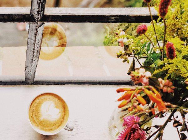 kaffee_fensterbank_hamburg