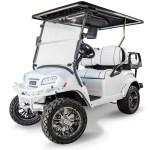 Club Car Onward Snow Storm Special Edition Golf Cart