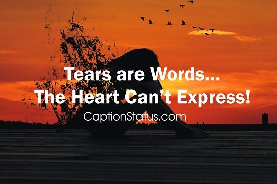 Love Sad Quotes Whatsapp Status
