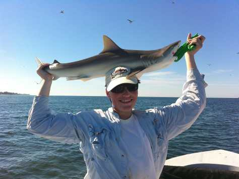 Charlie, Black Nose Shark, 10-14-13, Captiva Beach, Sanibel & Captiva Islands & Fort Myers Charters & Fishing Guide Service.
