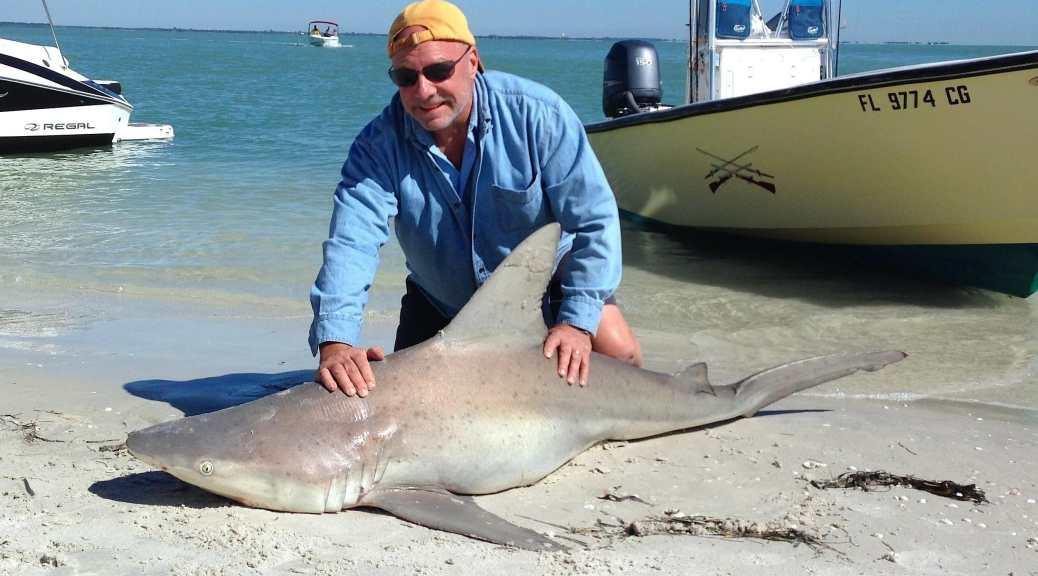 Sandbar Shark, Catch & Release, Redfish Pass, North Captiva, Sanibel & Captiva Islands & Fort Myers Charters & Fishing Guide Service, Saturday, December 30, 2017, [File Photo - March 9, 2014].