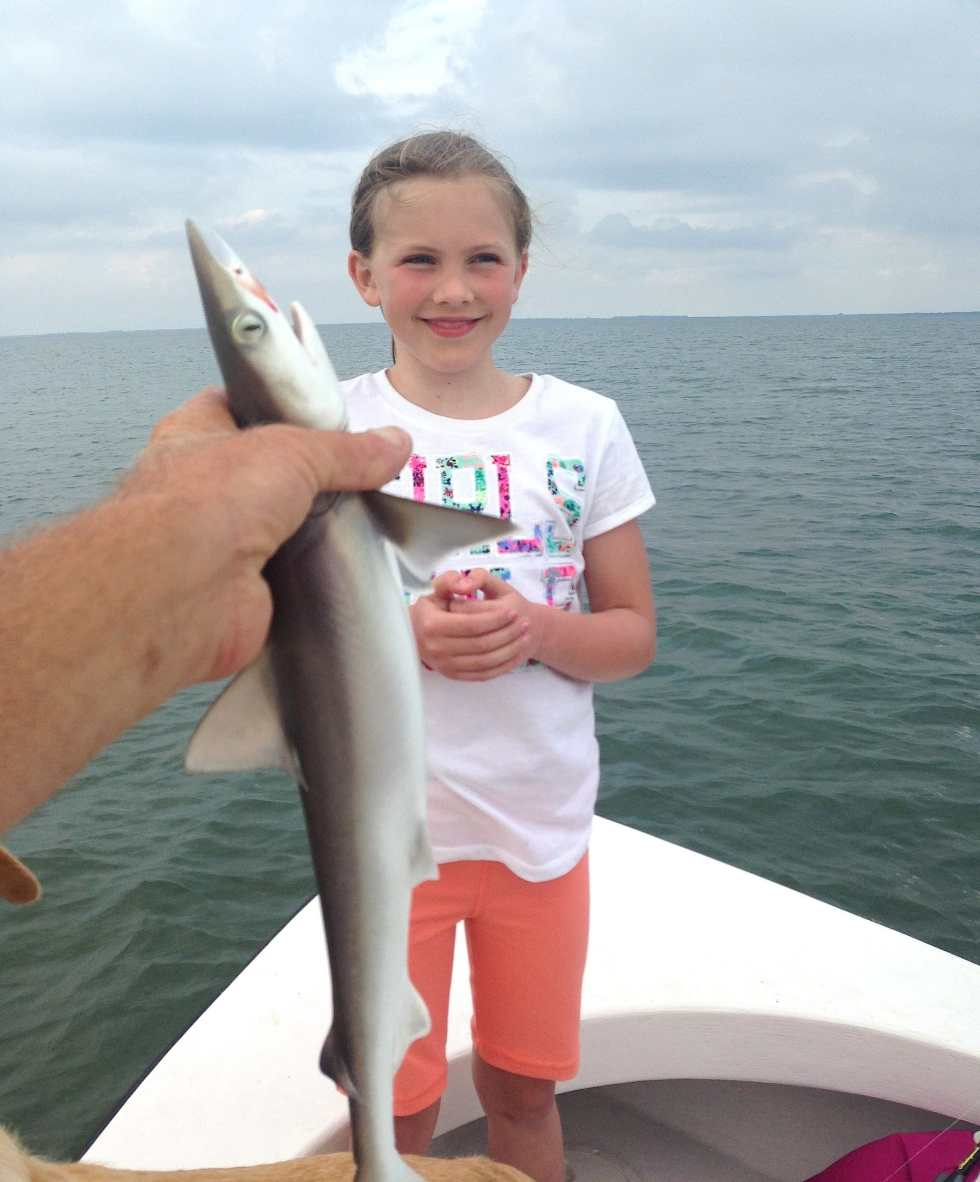 Atlantic Sharpnose Shark, 3-14-14, Sanibel & Captiva Islands & Fort Myers Charters & Fishing Guide Service.