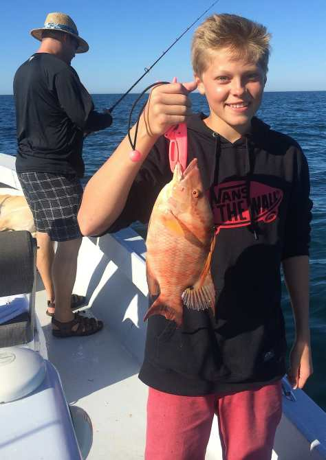 Hogfish, 12-20-14, Sanibel Fishing & Captiva Fishing & Fort Myers Fishing Charters & Guide Service.