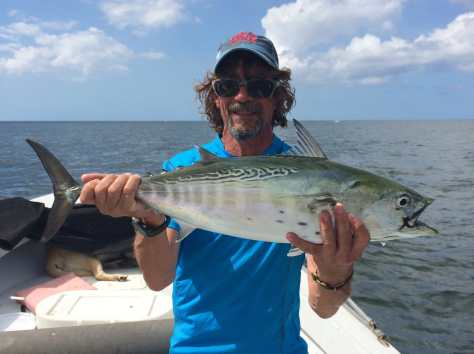 False Albacore Tuna, Bonita, Sanibel Fishing & Captiva Fishing, Sunday, 10-25-15 ~ #Sanibel #Captiva.