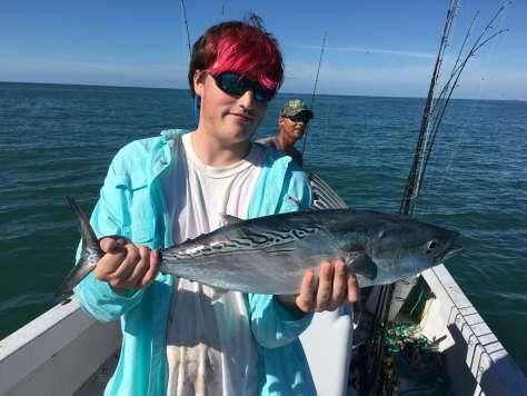 Charlie, Bonita, False Albacore Tuna, Sanibel Fishing & Captiva Fishing, Sanibel Island, Saturday December 31, 2016.