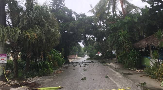 Captiva Village, Andy Rosse Lane 2, About Noon/E, Video, Hurricane Irma, Sanibel & Captiva, 11 AM/E Update, September 10, 2017.