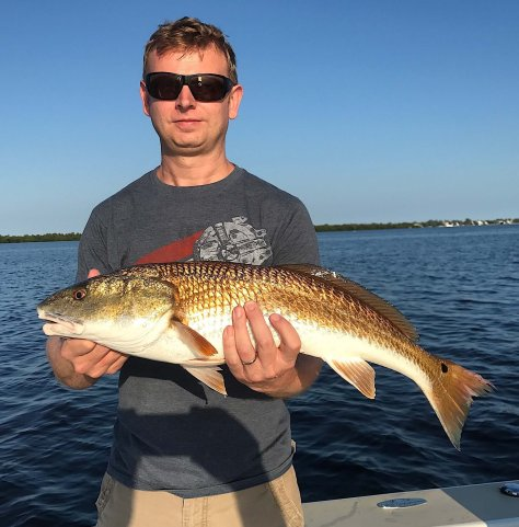 Redfish, Sanibel Fishing & Captiva Fishing, Sanibel Island, Wednesday, September 27, 2017.
