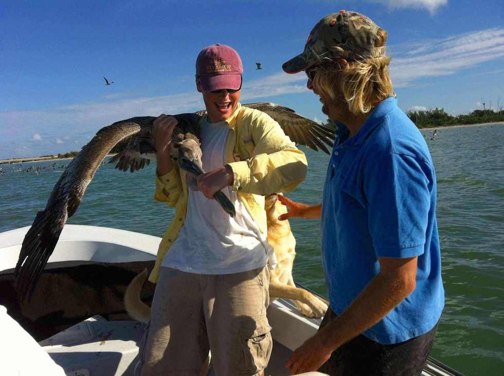 Charlie & Pelican, Catch & Release, Sanibel Fishing & Captiva Fishing, Sanibel Island, Wednesday, November 22, 2017, [File Photo - Thanksgiving Weekend , November 23, 2011].