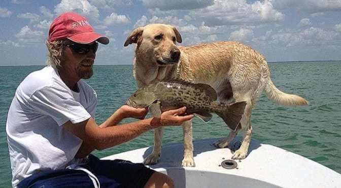 Captiva Fishing, Grouper!
