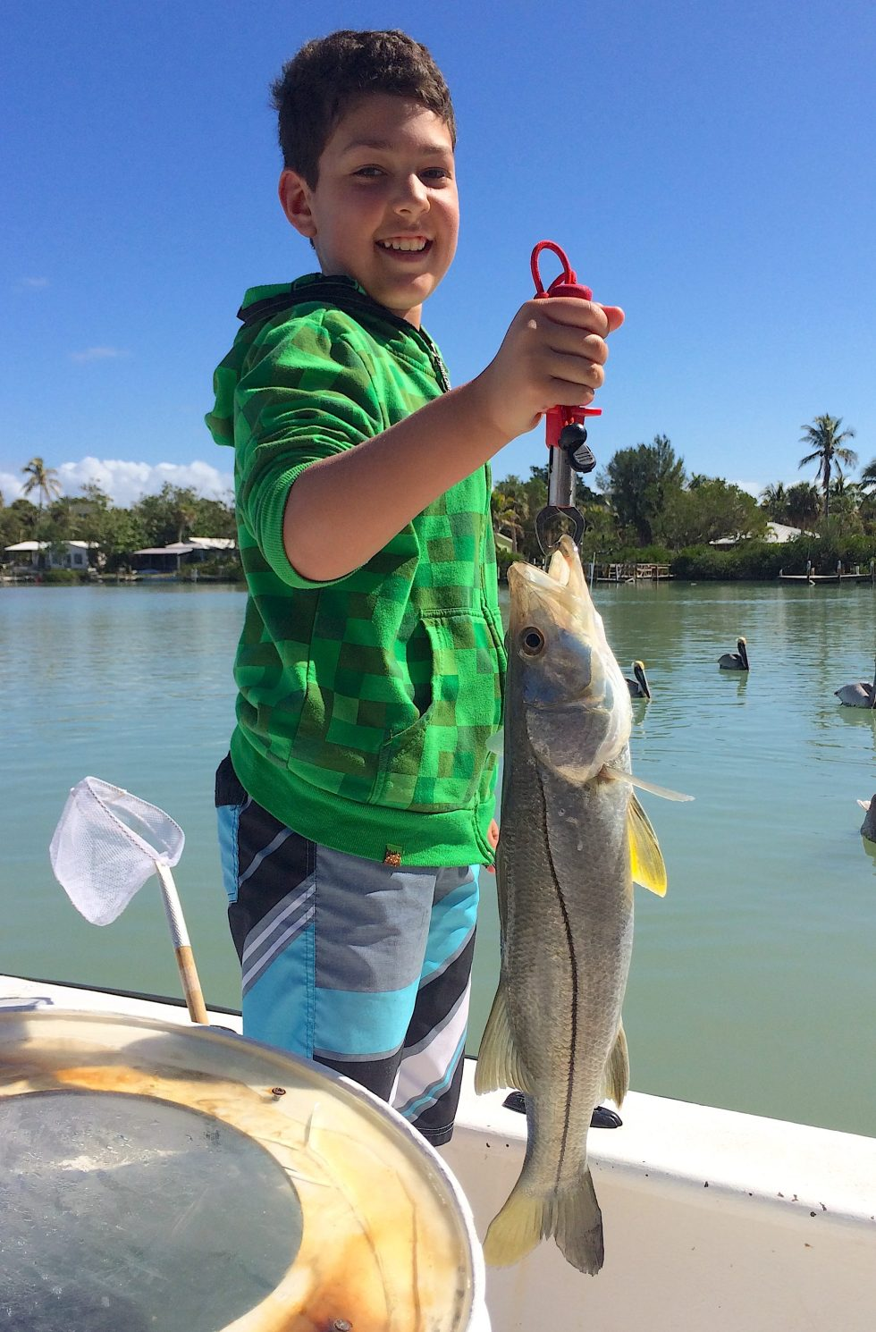 Snook, Passes, Docks,, Catch & Release, Sanibel Fishing & Captiva Fishing, Sanibel Island, Saturday, February 10, 2018.