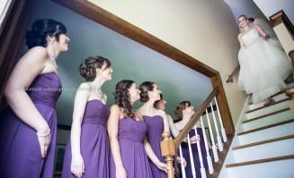 Wedding Bridesmaids and bride
