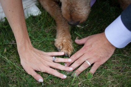 Bride groom hands dog paw