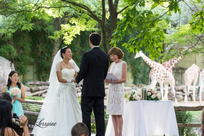 Brookfield Zoo Wedding, St Charles Il wedding photographer