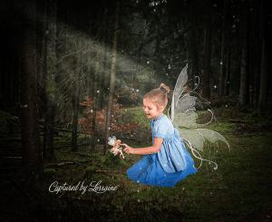 child fairytale photo geneva il