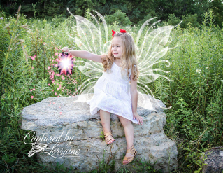 whimsical child photographer st charles il
