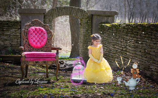 Beauty and the Beast photoshoot St Charles Il Photorapher