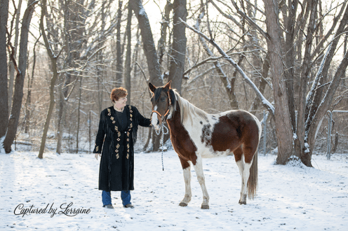 Illinois Horse Portraits