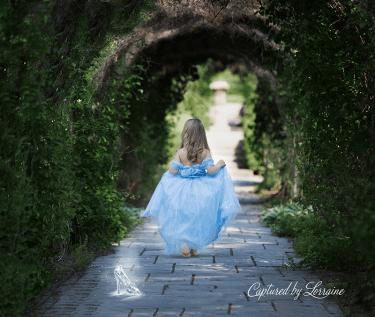 Fairytale photos illinois