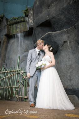 Brookfield Zoo Wedding Photographer