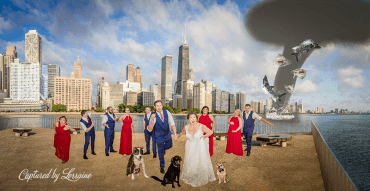wedding sharknado with dogs