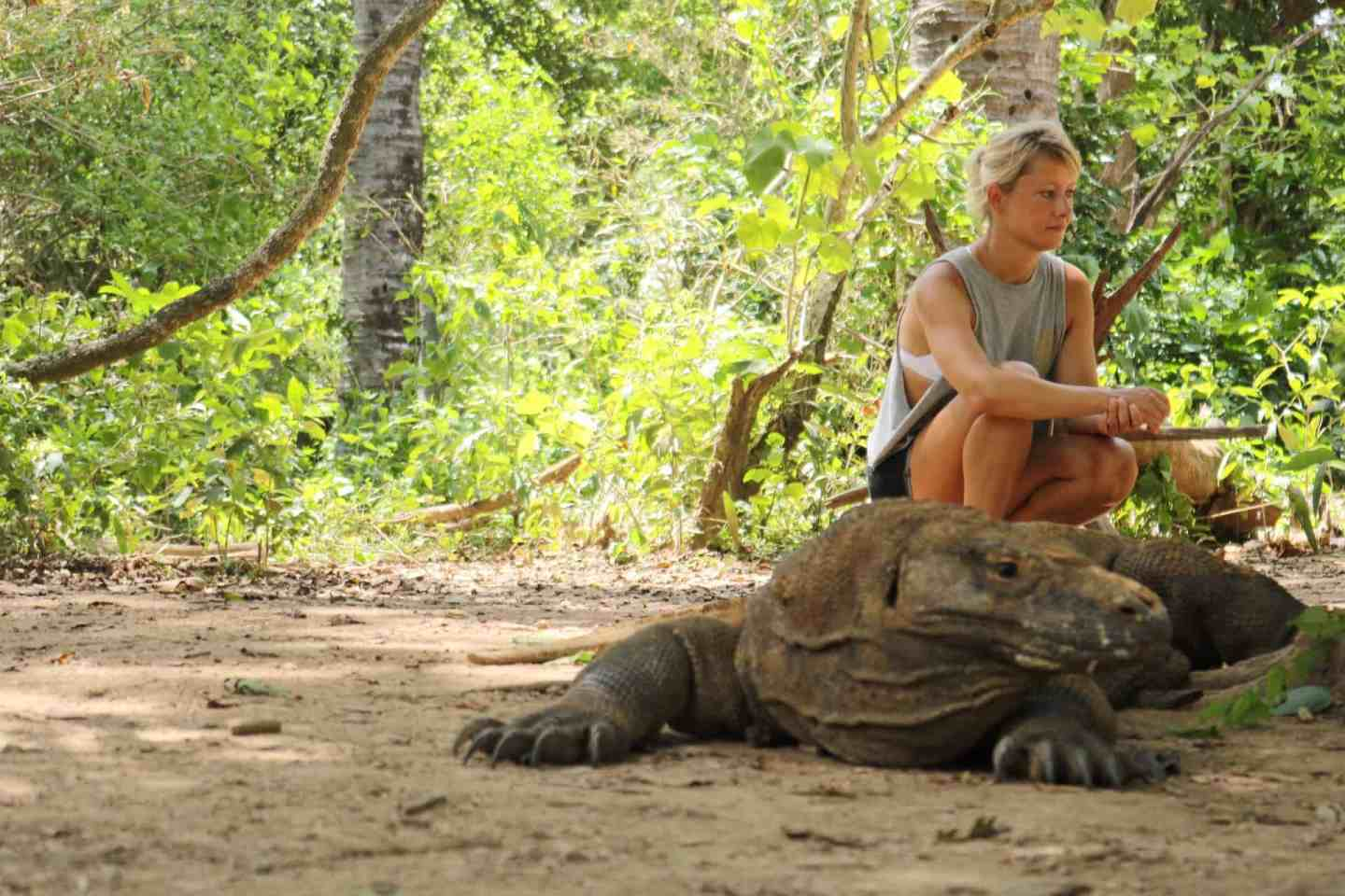 Komodo dragon laying on the ground and a girl kneeling behind it