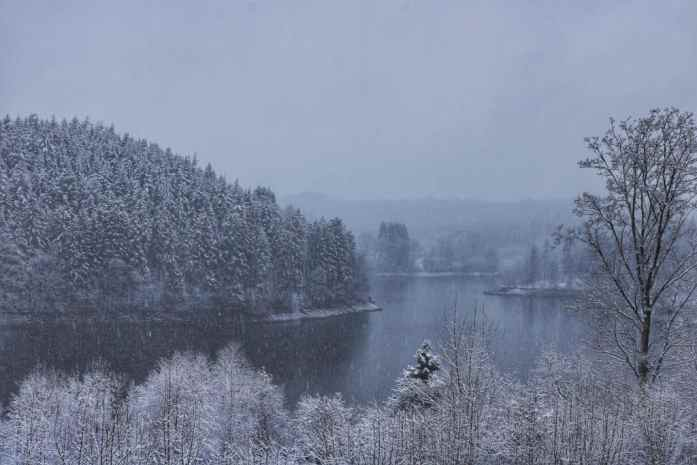 Lake surrounded by snowy trees