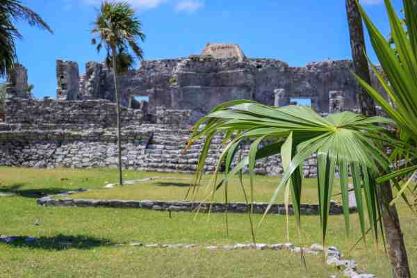 Tulum ruins and palmtrees