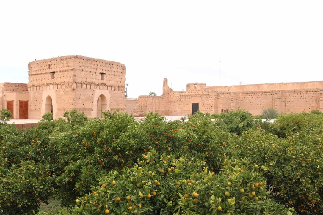 Orange trees in the ruins of El Badi Palace in Marrekech