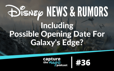 Ep 36: Disney World News, Rumors, & Hopes For A 5th Park?